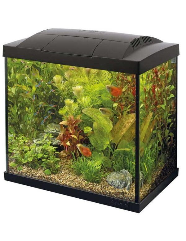 SuperFish Start 30 Tropical akvariestartsæt 25 L, sort